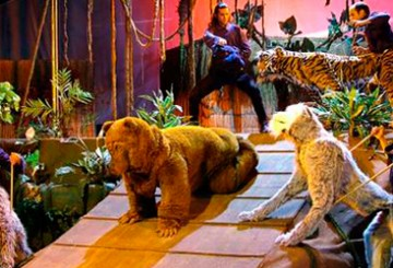 teatro ley de la selva