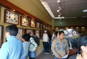 ecuador-insectarium