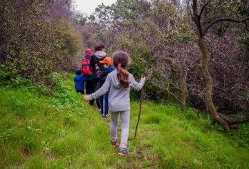 trail-ninos-2