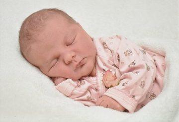 baby-2242638__340