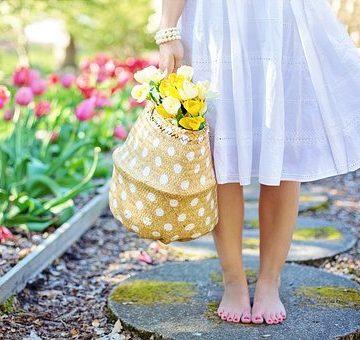 spring-2298279__340