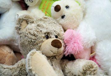 bear-2102443_960_720