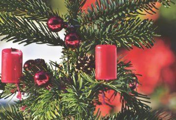 christmas-tree-4596104_960_720